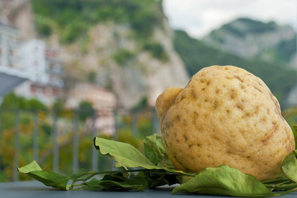 Amalfi-Zitrone