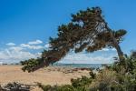 Blick auf Formentera