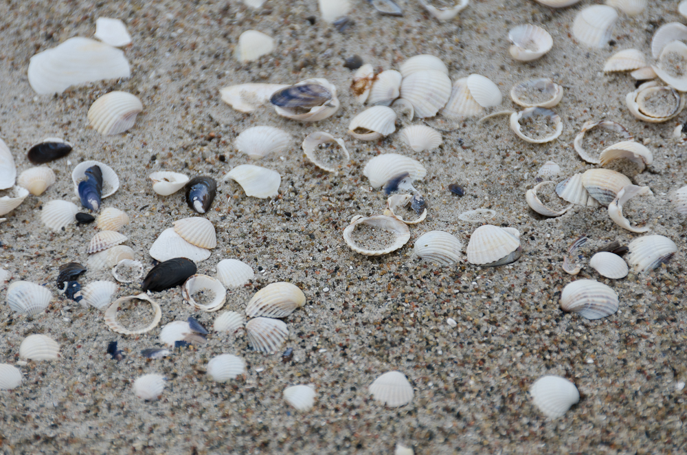 Sand in der Schaabe